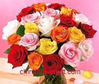 Pershendetje me nje lule per nje anëtarë? - Faqe 6 R198